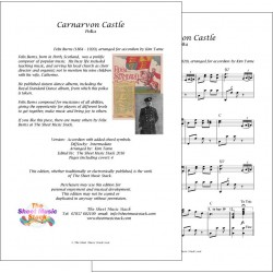 Carnarvon Castle - Felix Burns - accordion