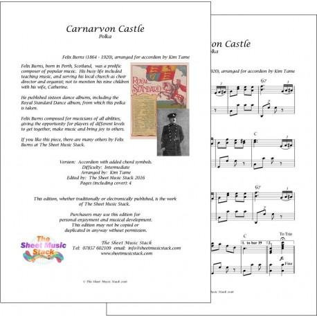 Carnarvon Castle - Felix Burns - accordion