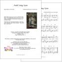 Auld lang syne - Robert Burns - Accordion